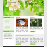 Ecomax wordpress theme