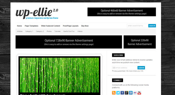 WP-Ellie – Solostream WordPress Template
