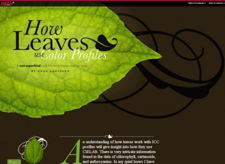 typographywebdesign65