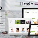 LioFolio Responsive Multi-Purpose Theme