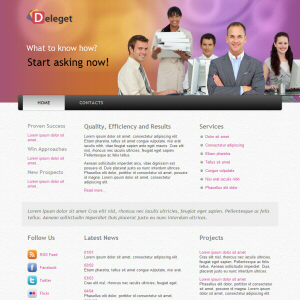 Deleget Free WordPress Theme
